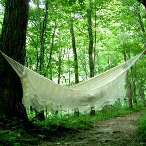 森の中で揺れるオーガニックコットンのハンモック